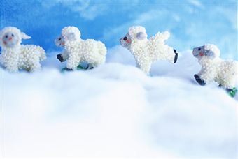 19 - Shepherds and Lambs