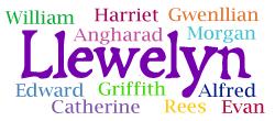 Common siblings for Llewelyn