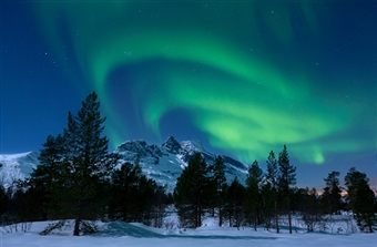 Scandinavian Spectaculars