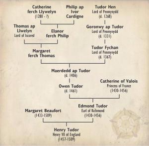 BBC Tudor tree