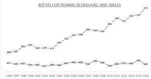 Births for Rowan