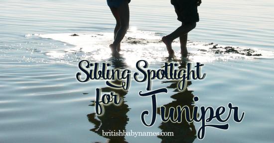Sibling Spotlight Juniper