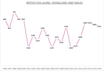 Births for Laurel