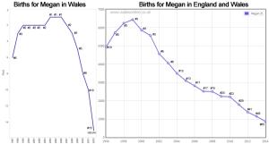 Births for Megan