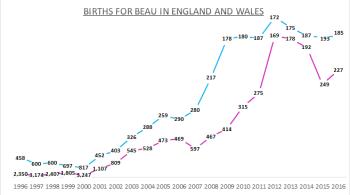 Births for Beau