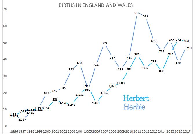 Births for Herbert