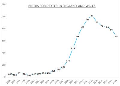 Births for Dexter